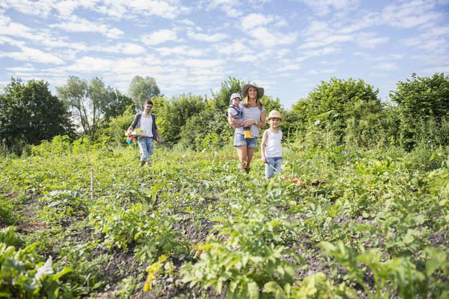 Family walking in community garden — Stock Photo