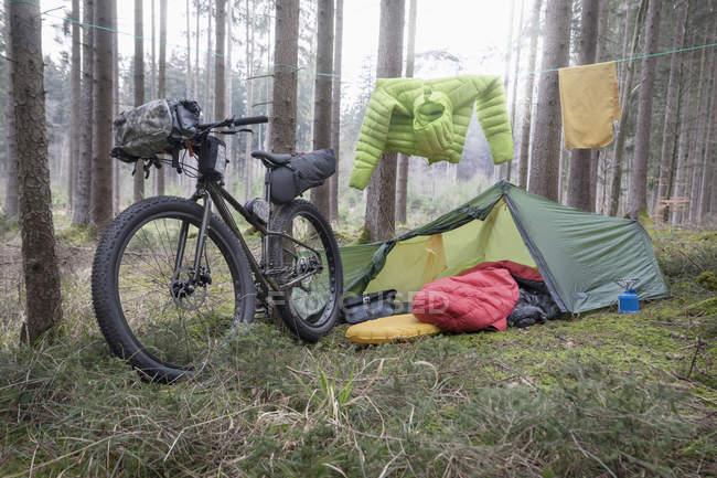 Горный велосипед припаркован на стволы деревьев — стоковое фото