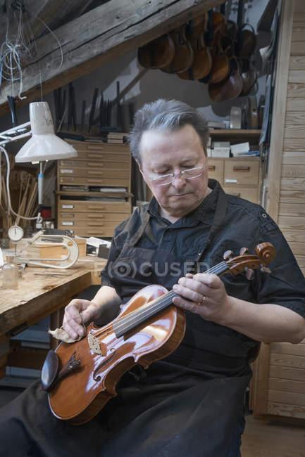 Violin maker polishing violin — Stock Photo