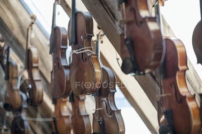 Violines en taller - foto de stock