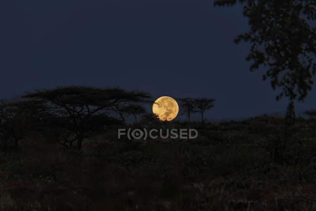 Повний місяць в чисте небо — стокове фото