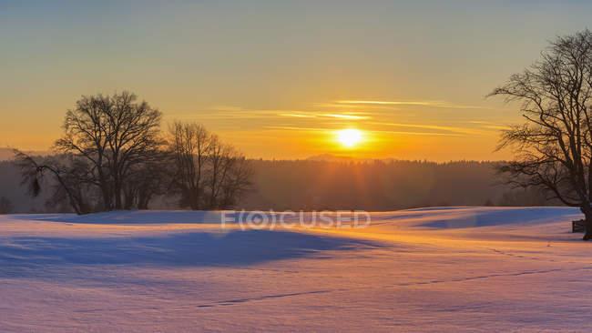 Закат и снежные поля — стоковое фото