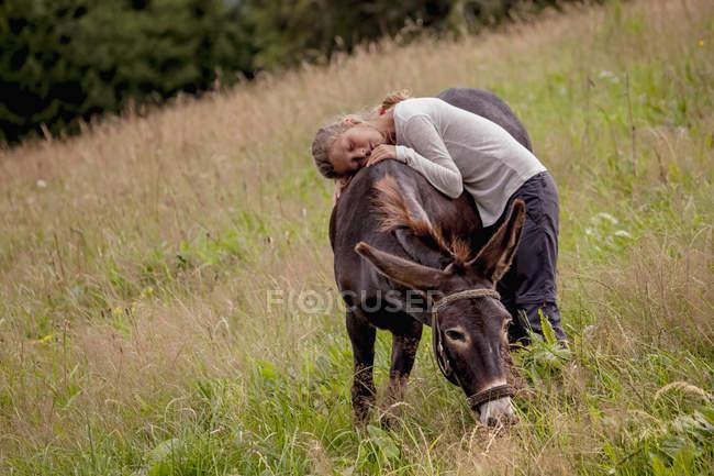 Girl lying on donkey on field — Stock Photo