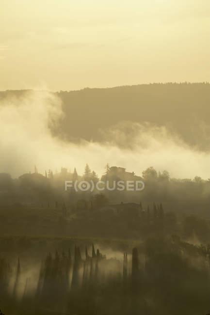 Рано утром пейзаж с туман на Валь ди Пеза в Тоскане — стоковое фото
