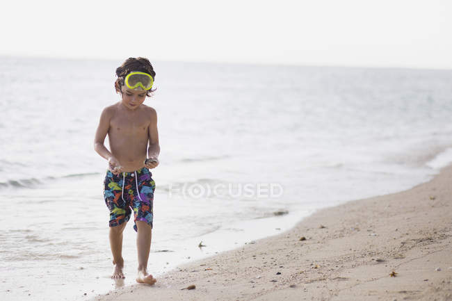 Boy carrying seashells at shore — Stock Photo