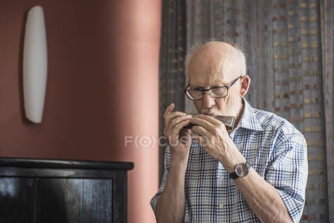 Dello strumento dell'uomo maggiore che gioca armonica — Foto stock