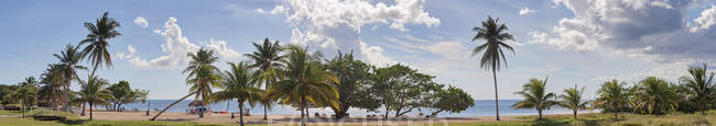 Scenic view of beach and palm trees, Playita Junco Sur, Cienfuegos, Cuba — Stock Photo