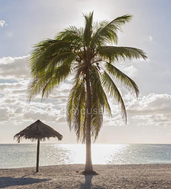 Живописный вид на пляж Playa Анкон, тики зонтик и пальмовое дерево, Тринидад, Куба — стоковое фото