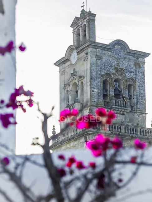 Стародавні базиліки Arcos de la Frontera з квіти квітучі передньому плані в Іспанії — стокове фото