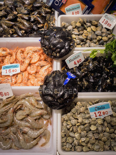 Crevettes, moules et fruits de mer à vendre au marché aux poissons — Photo de stock