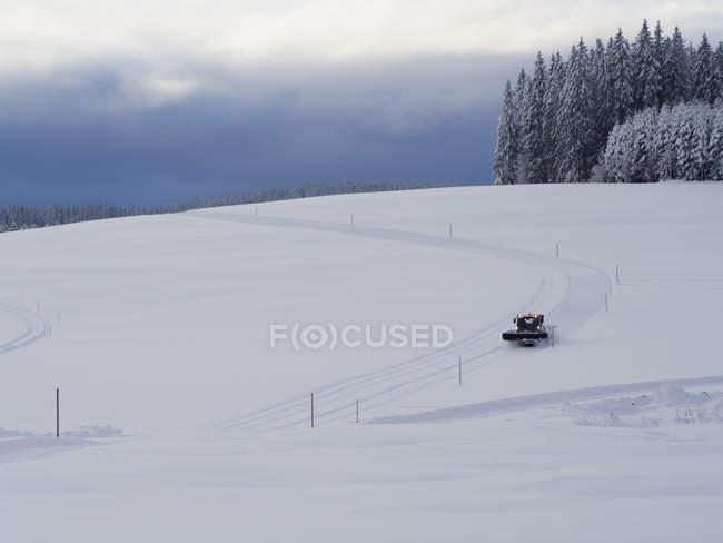 Трек сеттер, подготовляя Лыжная трасса Thurnerspur в горах Шварцвальд, Баден-Вюртемберг, Германия — стоковое фото