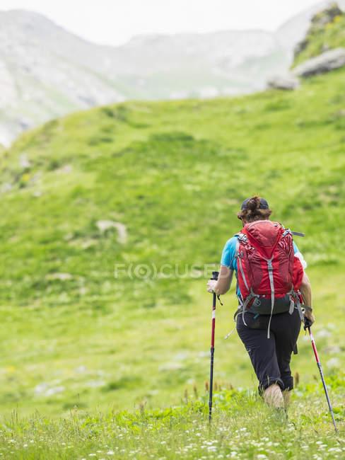 Жінка спуску у високих Піренеїв до долини Гаварні, Франція — стокове фото