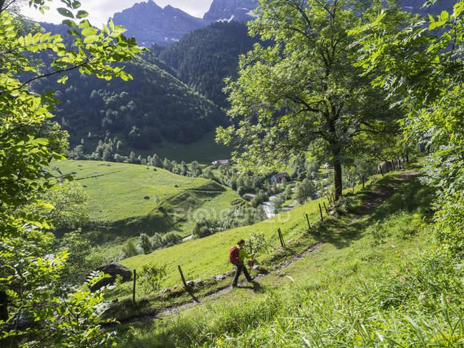 Зрілі жінки backpacker походи на сільських стежці на Cirque de Гаварні високий Піренеїв, Франція — стокове фото