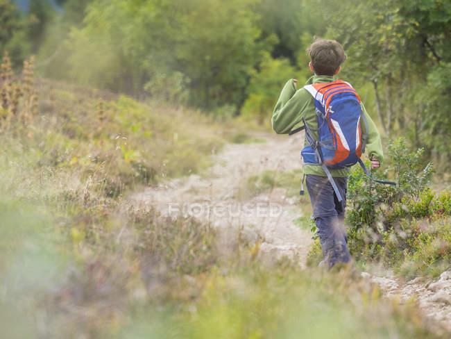 Fille de randonnée sur sentier unique en forêt-noire, Feldberg, Allemagne — Photo de stock