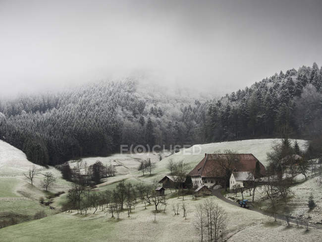 Snowy meadow, house of village in Black Forest, Baden-Wurttemberg, Germany. — Stock Photo