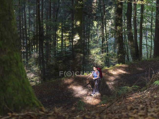 Donna matura in escursione nella Foresta Nera, Bad Wildbad, Baden-Wurttemberg, Germania — Foto stock