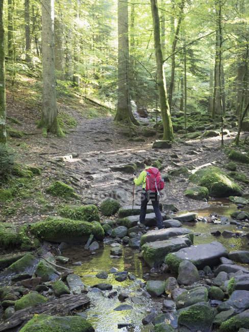Weibliche Wanderer gehen durch Wald Fluss im Schwarzwald, Bad Liebenzell, Deutschland — Stockfoto