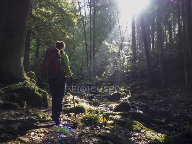 Escursioni delle donne nella Foresta Nera, Bad Liebenzell, Baden-Wurttemberg, Germania — Foto stock