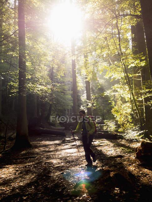 Femme mûre en randonnée dans la Forêt Noire, Bad Liebenzell, Baden-Wurttemberg, Allemagne — Photo de stock
