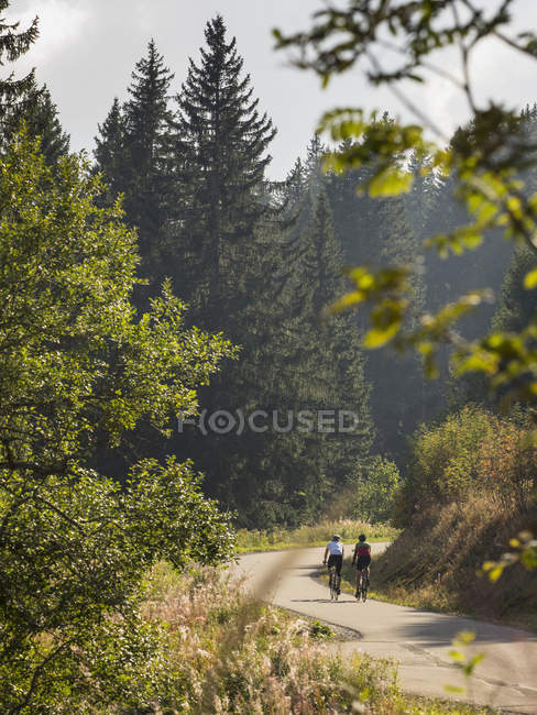 Two men riding bicycles on cycling tour in Middle Black Forest, Baden-Wurttemberg, Germany — Stock Photo