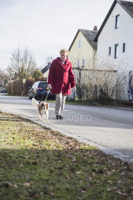 Senior mulher andando com o cachorro de estimação na rua — Fotografia de Stock