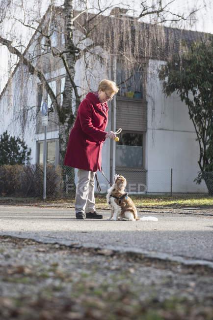 Donna anziana e cane che giocano per strada con il giocattolo — Foto stock