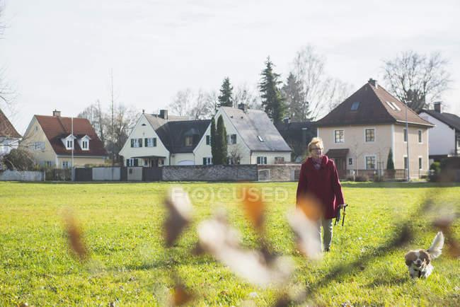 Senior woman walking on meadow with pet dog — Stock Photo
