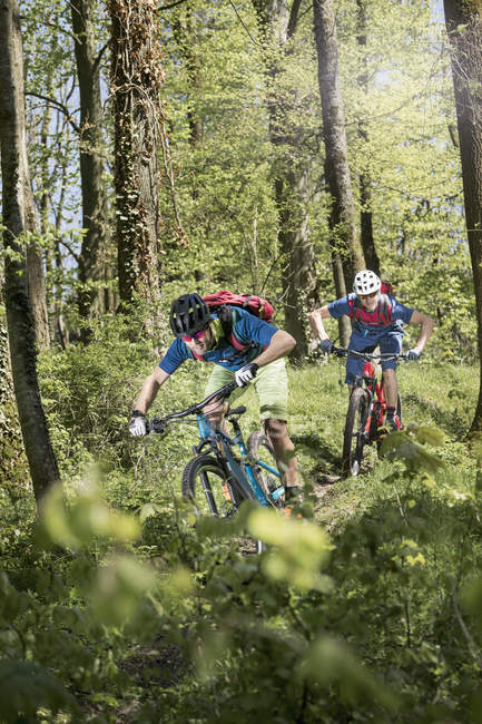Two mountain bikers speeding on forest path — Stock Photo