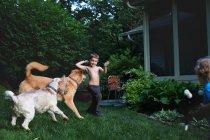 Meninos brincando com cães — Fotografia de Stock