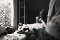 Adorable petit chien étreignant de garçon — Photo de stock