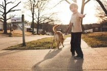 Little boy walking with a dog — Stock Photo