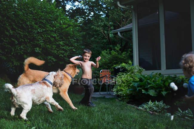 Petits garçons jouant avec des chiens — Photo de stock