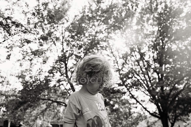 Boy against trees — Stock Photo