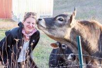 Cara feminina cheirosa de vaca — Fotografia de Stock