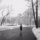 Бігун, що працює в центральному парку — стокове фото