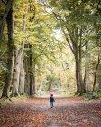 Ragazzo camminando attraverso la foresta — Foto stock