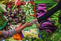 Mujer de compras en el mercado - foto de stock