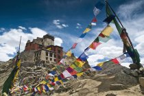 Namgyal tsemo gompa e preghiera bandiere — Foto stock
