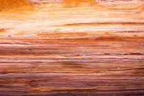 Orange rocks background — Stock Photo