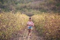 Mädchen zu Fuß durch Baumwollfeld — Stockfoto