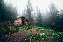 Охотничий домик в лесу — стоковое фото