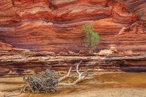 Пустыня скал — стоковое фото