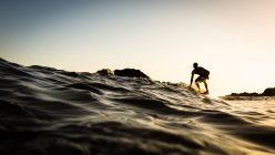 Silhouette of Surfer at sunset — Stock Photo