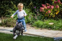 Хлопчик і щеня гра — стокове фото