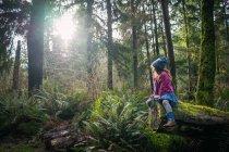Девушка, сидящая на покрытом мхом дереве — стоковое фото
