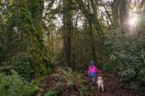 Girl walking through forest with dog — Stock Photo