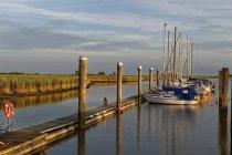Човни пришвартовані в marina — стокове фото
