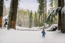 Boy running in winter forest — Stock Photo