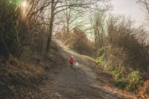 Ragazzo che cattura il cucciolo di retriever per passeggiata — Foto stock