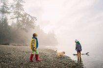 Jungen und Mädchen spielen mit Hündchen — Stockfoto
